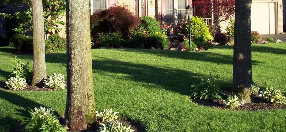 Columbus Leaf Removal Columbus Lawn Service Dublin